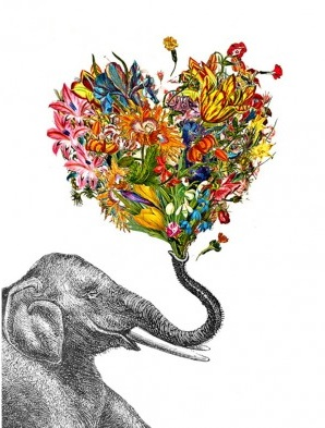 Love Elephant Card