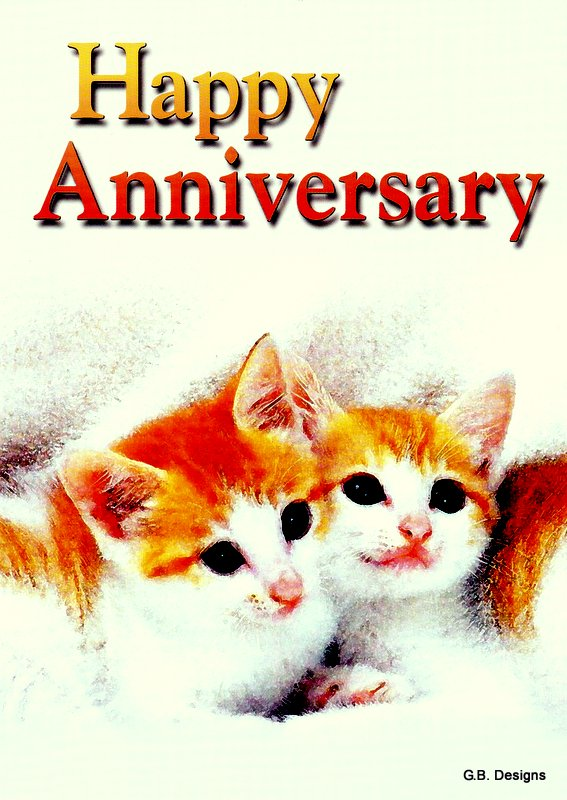 Kittens Anniversary Card
